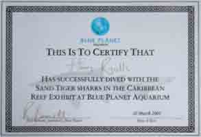 Copy of certificate issued to everyone taking place in dive.