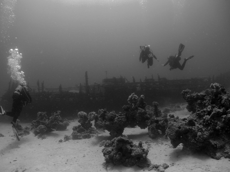 Third place: Divers on El Mina - Cyril